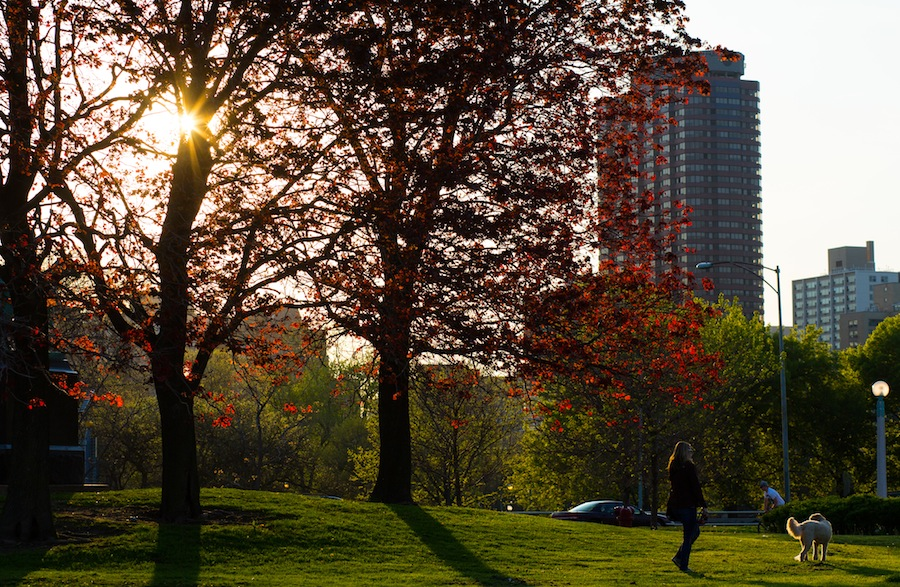 Chicago-Green_AA_SpringLincolnPark_30