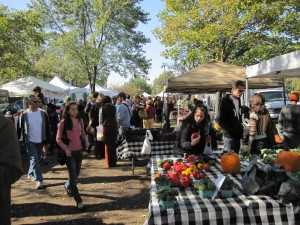 Logan Square farmers market - NoShameAdventures