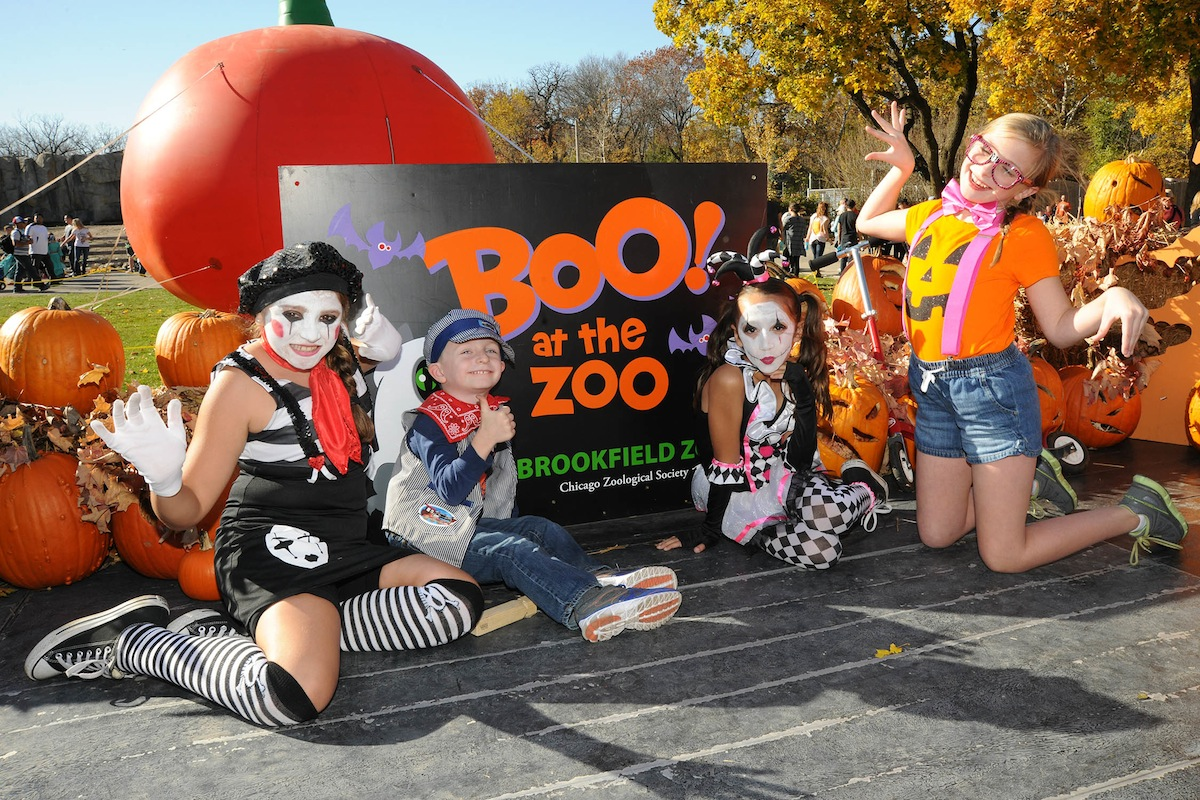 Halloween At Brookfield Zoo
