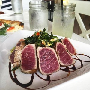 Hampton social - tuna