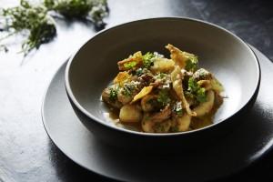Sepia gnocchi (Credit Paul Strabbing)