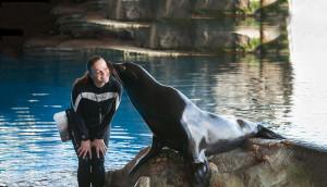 Shedd with sea lion