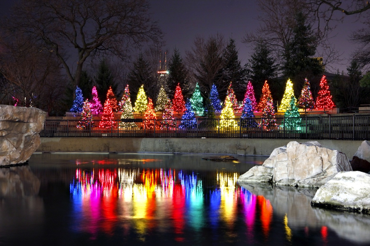 Color Themed Christmas Trees