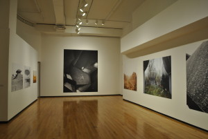 Museum of Contemporary Photography (web)